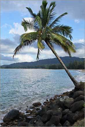 2. Hanalei Bay Kauai, Hawaii Plan your trip