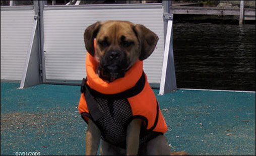 Ruby wears a life jacket right before she jumps into the water.