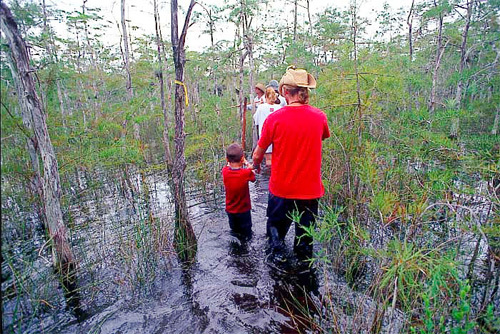 Exploring the Everglades in Southern Florida.