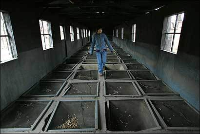 The ruins of the yellow-rat breeding room at Japan's notorious germ warfare center, Unit 731, in China.