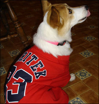 Shelly Angers of Contoocook, New Hampshire sent in this shot of Gracie Lynn Marie Varitek wearing her namesake's number as she studiously watched a Series game.