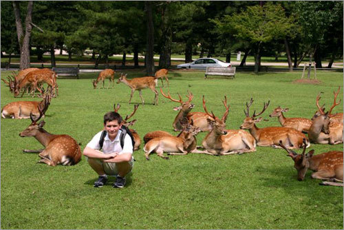 Eric poses undisturbed amongst a herd of deer at Nara Koen. One of the deer ate my map of the city.