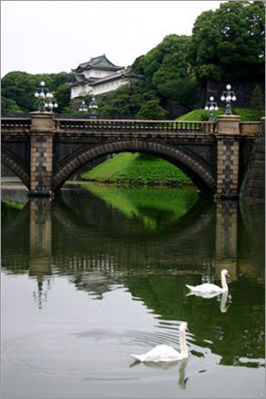 The Imperial Palace and its moat. Tokyo's many parks are a pleasure to explore.