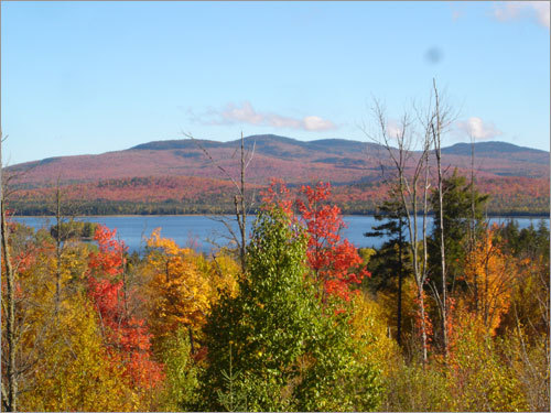 Leaves change color in Rangeley, Maine.