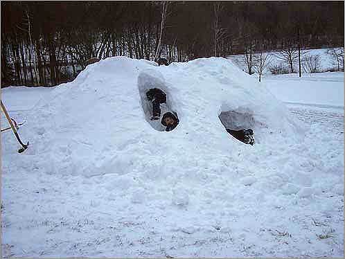Mike sent this photo of Spencer and Bob who took advantage of the snow to construct their igloo. Read the story Send us your igloo photos