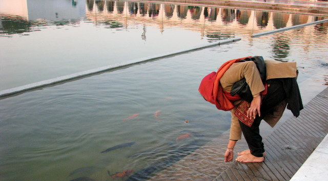 A pilgrim touches the healing waters at Guruwara Bangla Sahib.