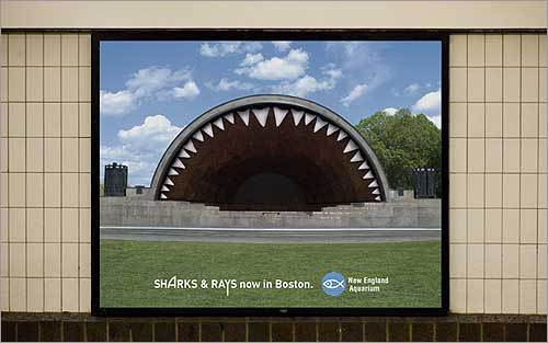 The New England Aquarium unleashed a shark attack on Boston landmarks to introduce its Shark and Rays exhibit, which opened in July.
