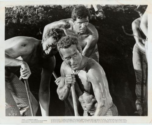Paul Newman played a prison inmate who challenged authority and rallied his fellow prisoners in 'Cool Hand Luke.'