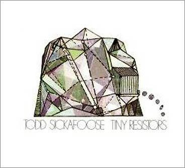 Todd Sickafoose 'Tiny Resistors'