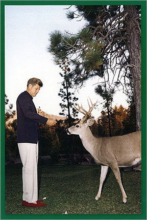 Caroline Kennedy This card, from the US Senate-hopeful, read: 'In this season of Joy, the John F. Kennedy Presidential Library and Museum thanks you for your friendship and good will and we wish you a year of peace and happiness.' In the photo, President Kennedy fed bread to a deer in Lassen National Park, Calif., in September 1963. The next morning when the president asked why there was no toast with his breakfast, he was told he had fed the entire supply to the deer.