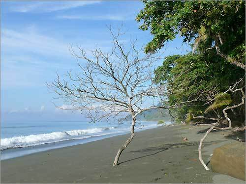 Warm weather photo contest album 2 for Black sand beaches costa rica