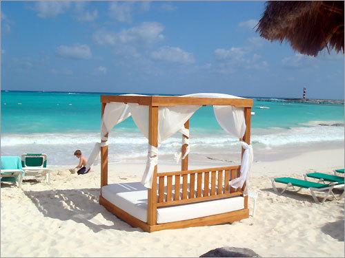 paradise photo contest