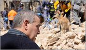 Scenes from the quake