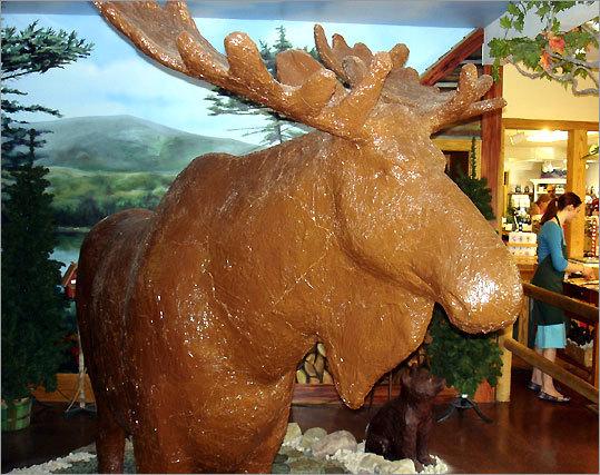 milk-chocolate moose