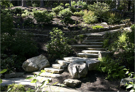 The Rhododendron Garden at the Coastal Maine Botanical Gardens<