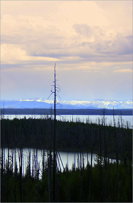 Yellowstone Lake in Yellowstone National Park .