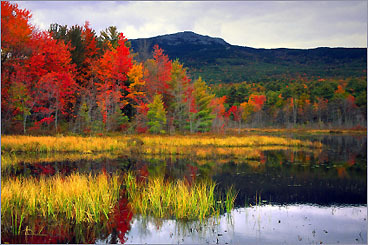Foliage drives in New England