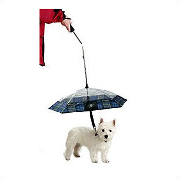 Pet Umbrella Price: $16.99 For your dog Wet dog no more with this handy umbrella from CoolStuffCheap.com. It's made of classic and clear plaid fabric, allowing a full - and fashionable - view of the pet. It serves both as a leash and a harness, attaching securely to your pet's collar.