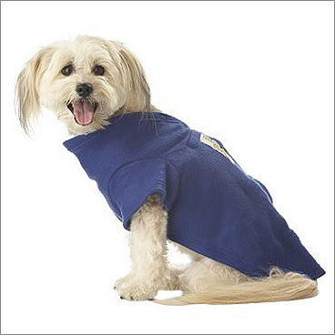 Snuggie for Dogs Price: $9.99 For your dog You've probably seen the human version of these by now, either on TV or in your own living room. But did you know your dog can get in on the Snuggie action as well? This version of the blanket with arm holes also has velcro tabs to ensure that Fido stays warm, comfortable, and ready to curl up on the couch to watch Touched by an Angel.