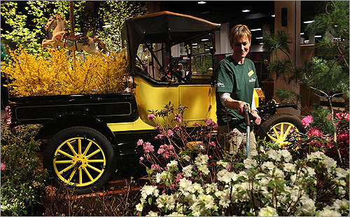 Although run now by a different organization, the flower show is back after a one-year hiatus because of financial issues. The show runs March 24-28 at the Seaport World Trade Center in Boston. Carol Fischer watered flowers with a 1915 Model T Roadster in the background from the Heritage Museum and Garden Cape Cod at the Boston Flower and Garden Show.