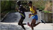 Marathon celebrations