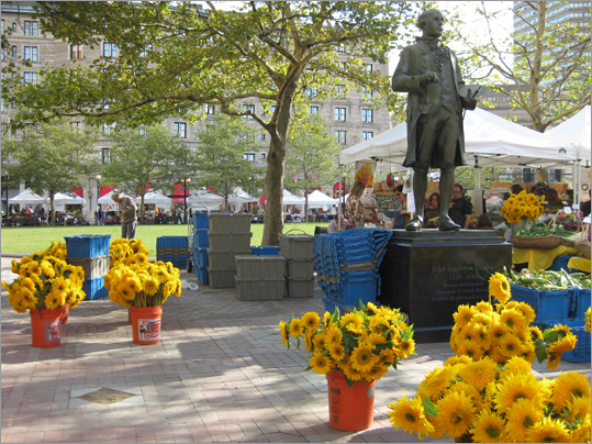 Margaret Dart of Berkshire, England, captured this image while visiting Boston last October: 'The city impressed us as the nicest we have ever stayed in. We particularly noticed the friendliness of the people and the beautiful colors around — sometimes in unexpected places. So here is a small-scale view of the colors in the market in Copley Square,' she said.