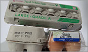 Egg firms scrutinized