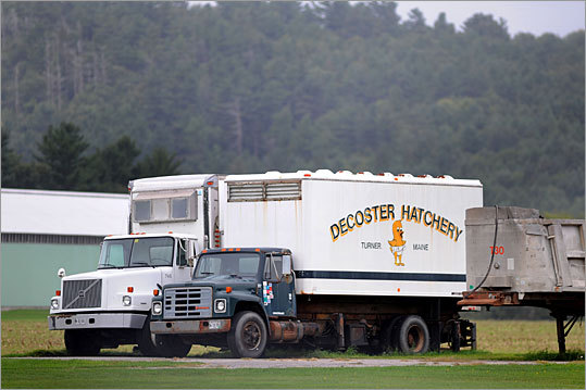 The DeCoster appears on a truck at a sprawling egg complex in Turner, Maine.