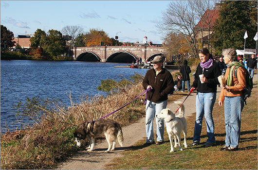 From left: Ron Phillips, Lindsay Phillips, and Nancy Phillips walked their dogs Mesa and Mikita along the water's edge.