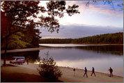 Scenes from Walden Pond
