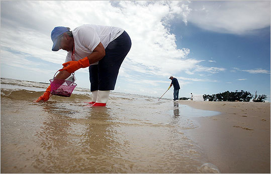 As oil began to reach the shore, crews worked to cleanup the beaches and protect the vital coastline. Workers clean tarballs from a beach on July 20, 2010 in Waveland, Mississippi.
