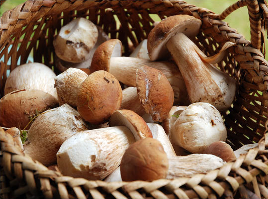 Mushrooms Some varieties appear to possess anticancer properties. Mushrooms are one of the few foods rich in selenium, which is a powerful antioxidant, Antinoro says.