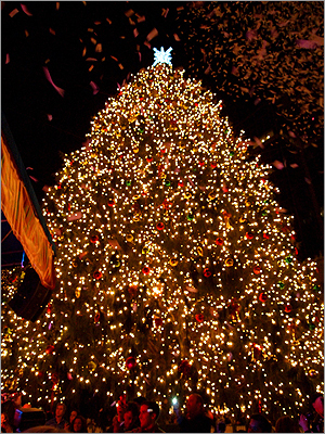 The tree, an 85-foot Norwegian Spruce grown in Rockland County, N.Y., was decorated with more than 20,000 lights and 1,500 ornaments.