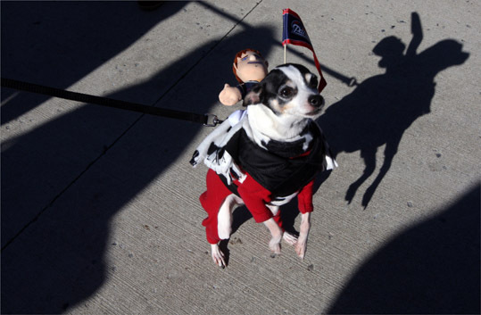 Armanie, a rat terrier, attended the rally.