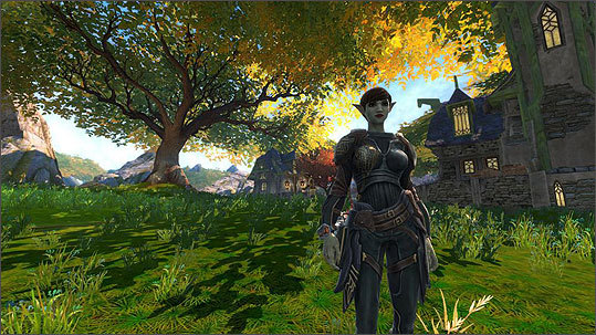 Players can choose their species, human or elf, and their trade - craftsman, thief, mercenary, or magician. The personality and playing style can be changed at any time.