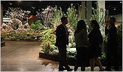 The 2011 Boston Flower and Garden Show
