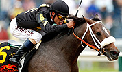 Oxbow wins Preakness