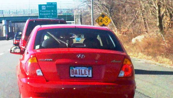 Bailey Plate
