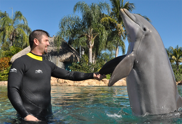 Discovery Cove played host today to the Red Sox No. 1 catcher and team captain, Jason Varitek. Varitek spent the day swimming with Atlantic bottlenose dolphins, snorkeling with rays, hand-feeding exotic birds and relaxing on pristine beaches at the all-inclusive park. For more information on SeaWorld and Discovery Cove, visit WorldsofDiscovery.com.