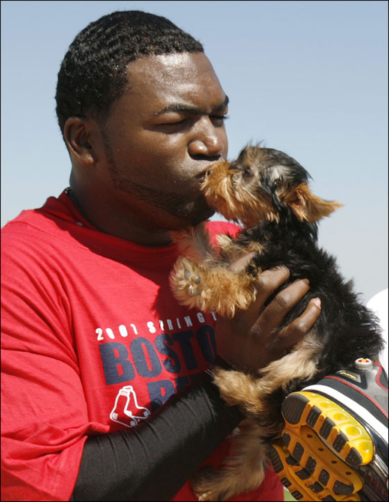 David Ortiz kisses his dog 'Mikey' following conditioning drills at the team's spring training facility in Fort Myers, Florida February 21, 2007.