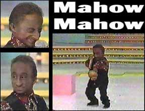 mahow.jpg