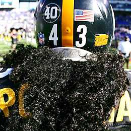 Polamalu hair