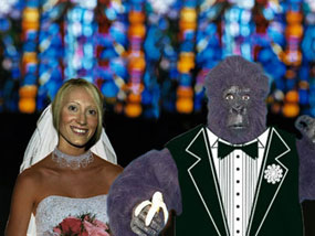 Theo and Marie's Wedding - BDD graphic - not a real photo!