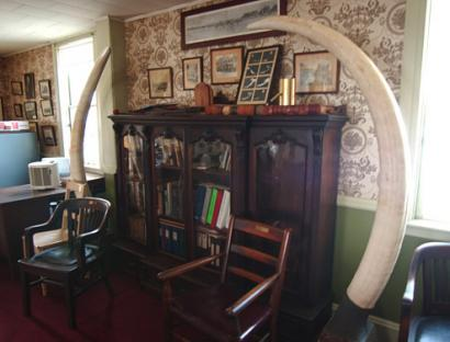 At the Old Colony Club in Plymouth, walls are adorned with photographs of past club presidents (above) and a moose head (top center). Elephant tusks flank a cabinet in the billiards room (top left) and a flag hanging outside marks the date of the club's founding.