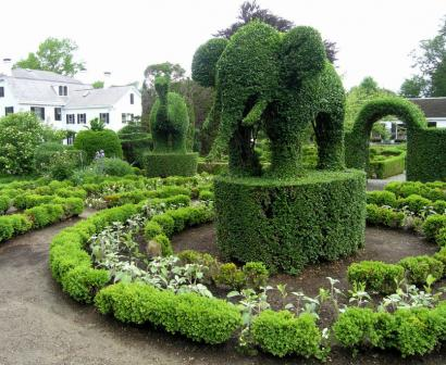 The elephant and the giraffe behind it are among the oldest members of the Green Animals Topiary Garden in Portsmouth, R.I.