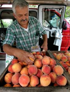 Ken Nicewicz handles his peaches with care at the farmers' market in Brookline. His family farm grows 15 varieties of peaches and many other fruits.