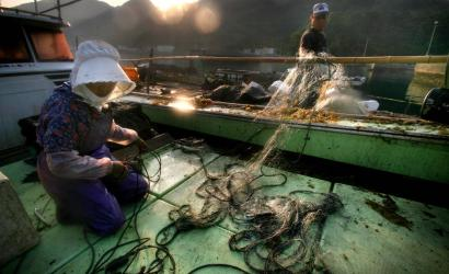 Itsuko Mori and her husband, Akinori, cleared their nets during a morning of fishing in Minamata Bay. Both are suffering from symptoms of mercury poisoning, painful hand and leg aches, and loss of feeling and coordination.