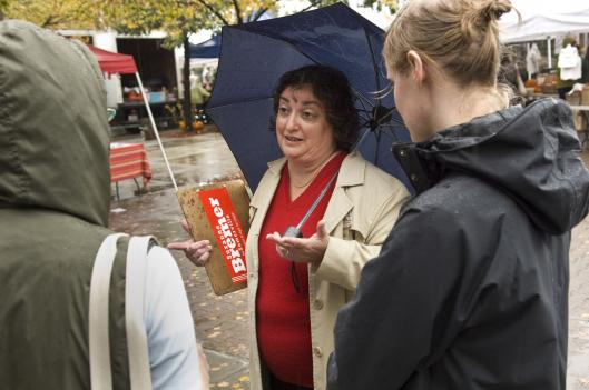 Mayoral candidate Suzanne Bremer, greeting potential voters at a farmers market last weekend in Union Square, is urging a more comprehensive approach to issues such as public transit, affordable housing, and education in Somerville.