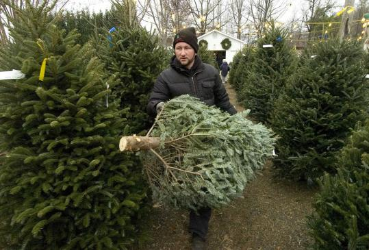 More consumers are skipping outdoor lots like the Fred and Dot Wagoner Christmas Tree Lot in Greensboro and buying artificial trees. Some who choose real ones are paying higher prices.