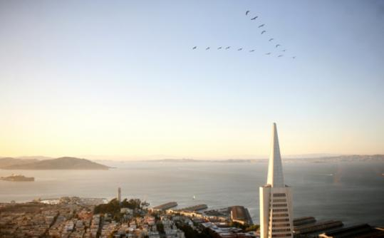 The bird's-eye view of San Francisco, and beyond.